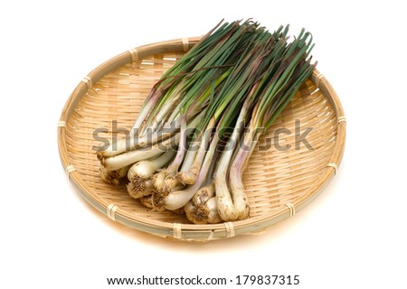 Rakkyo-Allium chinense, This image is available for clipping work.  - stock photo