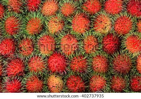 Rambutan fruit , Thailand - stock photo