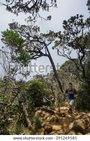Ranau Sabah Malaysia-March 12, 2016:Unidentified climbers seen at Timpohon trail to Laban Rata of Mount Kinabalu.Climbing season officially start on Dec 1,2015 after 6 month closure due to earthquake