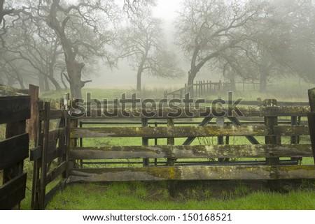 Ranch in Fog - stock photo