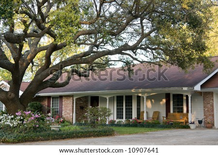 ranch-style home with large live oak tree in front - stock photo