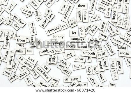 Random collection of  different words and word-forms on magnetic tiles - stock photo