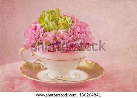 Ranunculus flower in a tea cup - stock photo