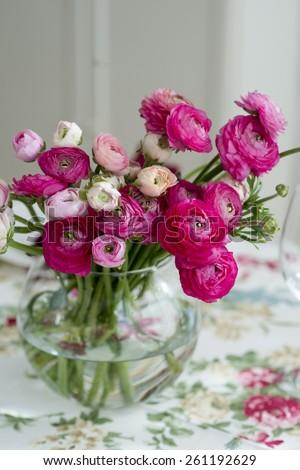 ranunculus flowers - stock photo