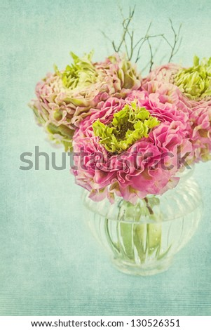 Ranunculus flowers in a vase - stock photo