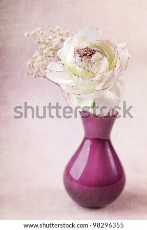 Ranunculus flowers in a vase - stock photo