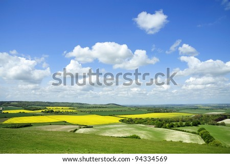 Rape fields from Dunstable Downs - stock photo