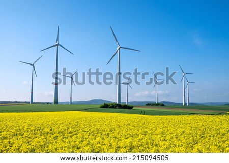 Rapeseed and windwheels - stock photo