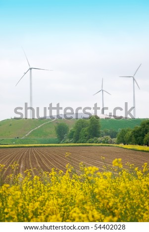 rapeseed field and windmills in a beautiful landscape