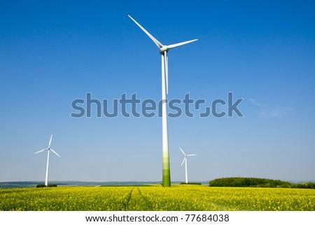Rapeseed field and windwheels - stock photo