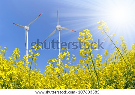 rapeseed field with wind turbine against the blue sky - stock photo