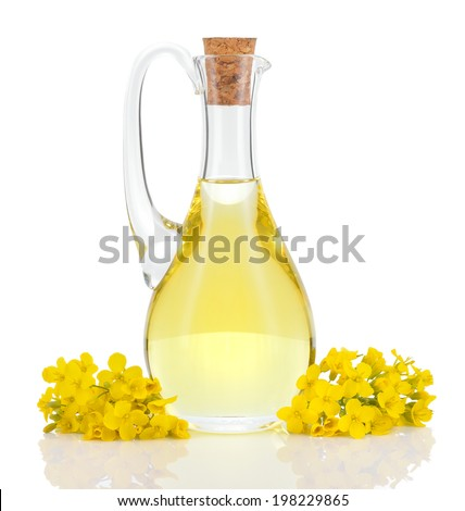 Rapeseed oil in decanter and oilseed rape flowers isolated on white background. Canola oil. - stock photo