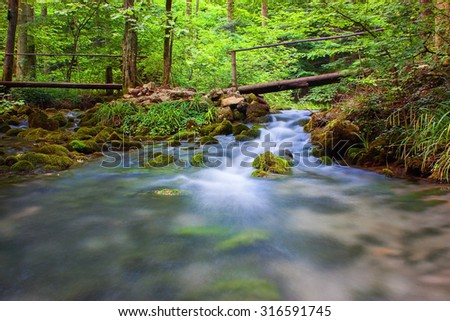 Rapid creek flowing through forest - stock photo