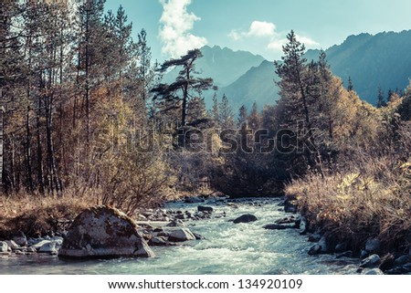 Rapid river in autumn mountains of the Caucasus - stock photo