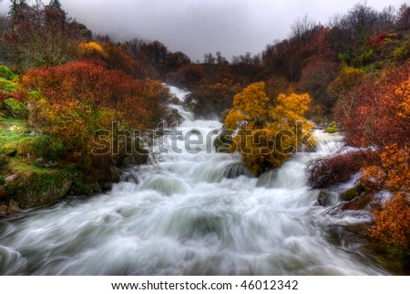 Rapid waters in a valley with mossy rocks and colorful bushes - stock photo