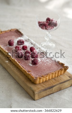 raspberry and cranberry tart - stock photo