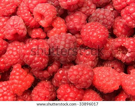 Raspberry berries