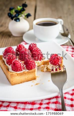 Raspberry cake - stock photo