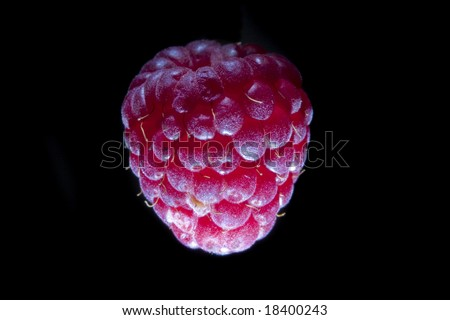 Raspberry Object on black background