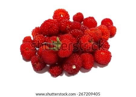 raspberry-Rubus hirsutus, on white background.  - stock photo