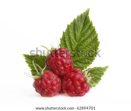 Raspberry with green leaves