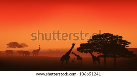 raster - african wildlife illustration - savannah landscape at sunset  (vector version is available in my portfolio) - stock photo