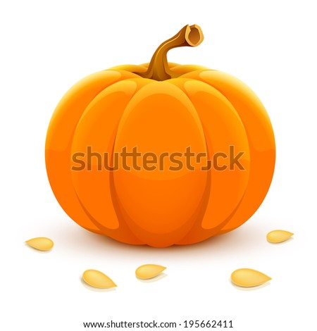 Raster pumpkin isolated on white background. - stock photo