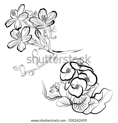 RASTER  Set of floral design elements -  flowers - stock photo