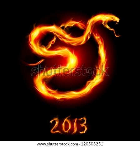 Raster version. Card with Fire Snake. Illustration on black background - stock photo