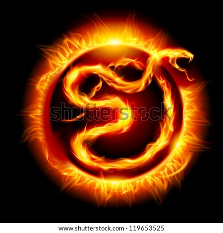 Raster version. Colorful Card with Fire Snake. Twenty thirteen new year. - stock photo