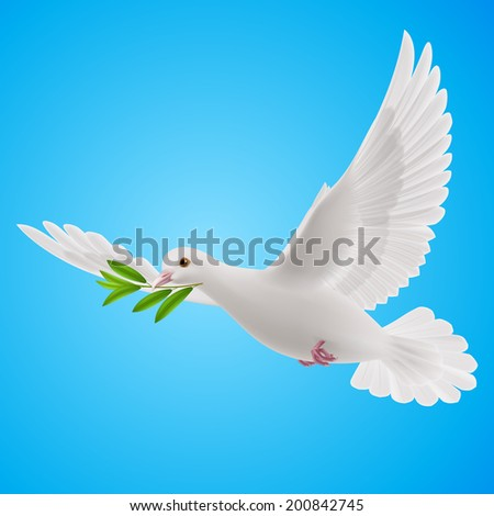 Raster version. Dove of peace flying with a green twig after flood on blue background