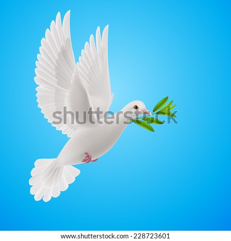 Raster version. Dove of peace flying with a green twig after flood on sky  - stock photo