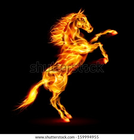 Raster version. Fire horse rearing up. Illustration on black background. - stock photo