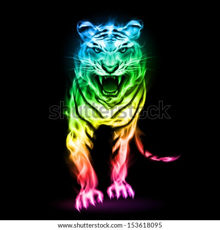 Raster version. Fire tiger in spectrum colors isolated on black background.