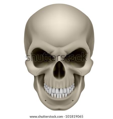 Raster version. Freaky Human Skull. The emotion of anger. Illustration on white. - stock photo