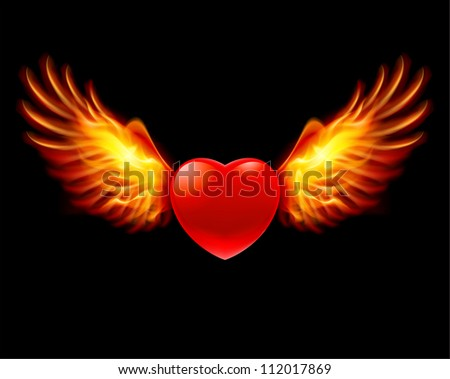 Raster version. Heart in fiery wings, a color illustration on a black background - stock photo