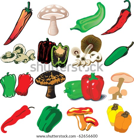 Raster version Illustration of 16 different Mushrooms and Peppers - stock photo