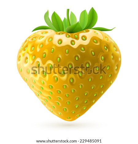 Raster version. Realistic illustration of yellow strawberry on white background  - stock photo