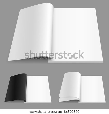 Raster version. Realistic magazine set number two. Illustration on white background for design. - stock photo
