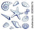 Raster version. Sea Set From Starfishes and Cockleshells.  illustration on white background. - stock photo