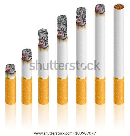 Raster version. Set of Cigarettes During Different Stages of Burn.