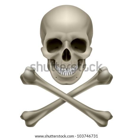 Raster version. Skull and crossbones. Illustration on white background - stock photo