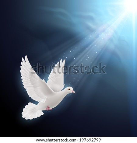 Raster version. White dove flying in sun rays against dark  blue sky. Symbol of peace - stock photo
