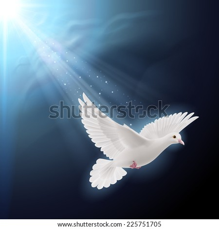 Raster version. White dove flying in sunlight against dark  blue sky as symbol of peace  - stock photo