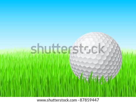 Raster version. White golf ball in green grass on a blue sky. - stock photo