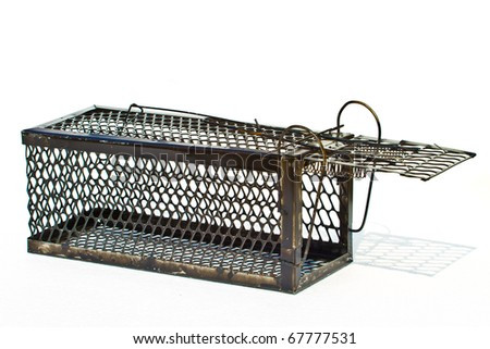 Rat cage white background. - stock photo