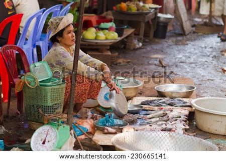 RATANAKIRI, CAMBODIA - SEPTEMBER 20: Woman selling fish at a local market in Ratanakiri province, Cambodia on September 20, 2011. - stock photo