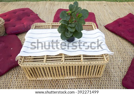 rattan mat, flowers in rattan basket, tree, cushions, rattan basket, white cloth and tree are ready for picnic. - stock photo