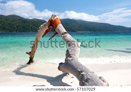 Ravi island - stock photo