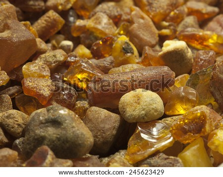 Raw amber from the shores of the Baltic Sea in the Kaliningrad region  - stock photo